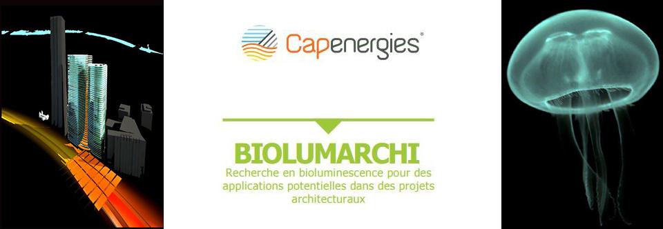Le Tangram Lab labellisé par Capenergies pour ses travaux de recherche sur la bioluminescence
